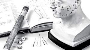 Ciclo de Estudos Medicina Tradicional Chinesa